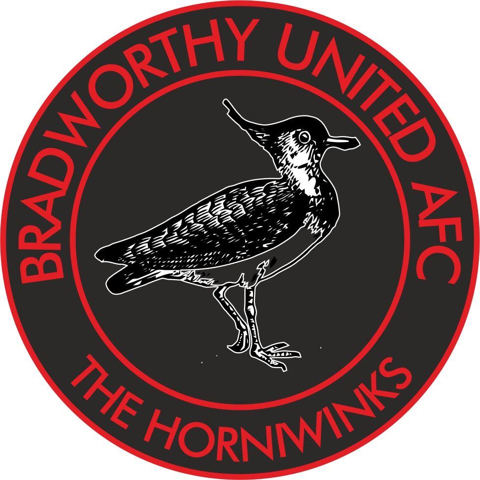 Club Image for Bradworthy FC