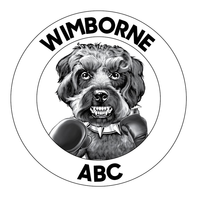 Club Image for Wimborne ABC