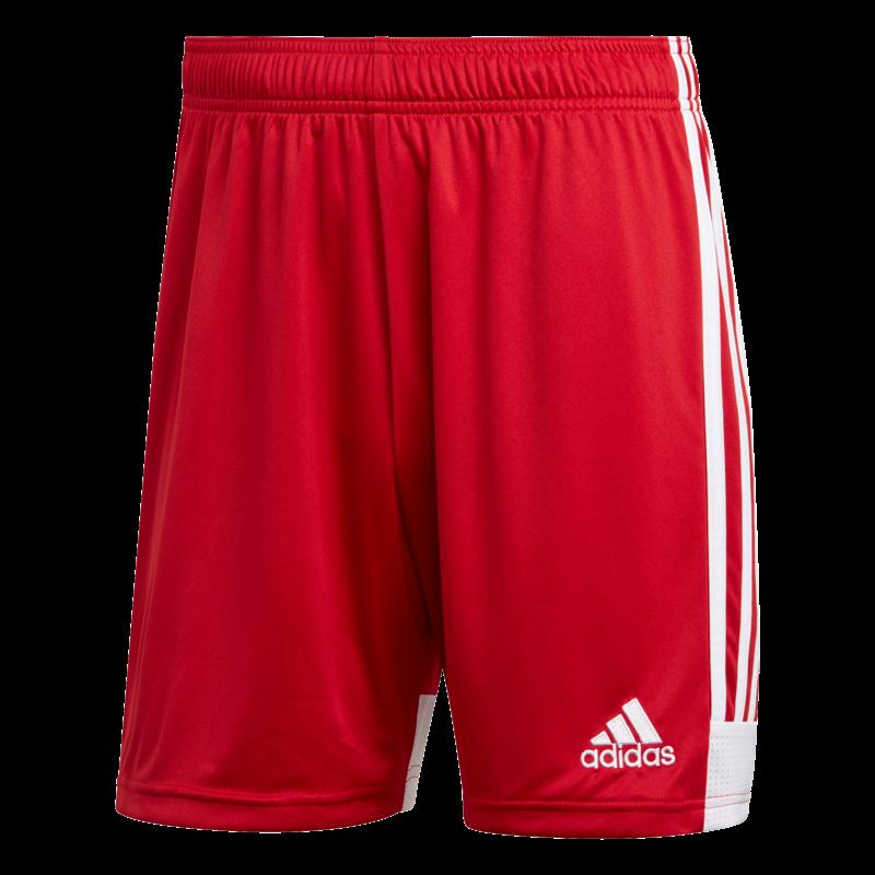Adidas Tastigo 19 Shorts Adult