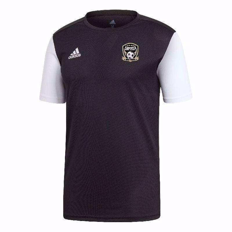 Fremington FC Estro Training T Shirt ADULT